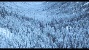 Montage vidéo publicitaire sur Noël
